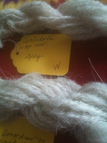 Swaledale samples closeup