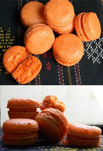 mango macawrongs