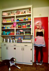 The best Boxer puppy ever, Truly. (Sherri DuPree Bemis) Tags: pink vintage puppy retro boxer pinkhair fiestaware redkitchen bemis vintagekitchen vintageapron sherridupree pinkkitchen