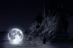 ~ Moon tamer ~ (S E L E N E L I O N | Visual Art, Eclipsed.) Tags: bamfield britishcolumbia canada moon night stars beach widow death loneliness lonely tamer rock starlight moonlight sea woman girl grief