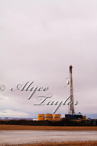 Day 80 - Drilling for Oil