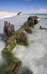 Beach wreck long exposure (RobertSteele) Tags: ocean wood sea summer beach metal canon landscape sand australia bluesky perth wa wreck scrap westernaustralia freemantle groin clearwater shallows polariser 2011 40d canon40d cyoconnerbeach