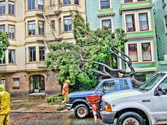 It's Raining Cats and Dogs and Trees are Falling on Houses on Dolores Street (Walker Dukes) Tags: sanfrancisco california blue houses orange black green water hail yellow canon drops workers traffic bricks chainsaw plastic sidewalk trucks victorians cones torrent topaz raincoats adjust s95