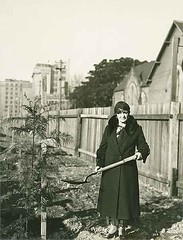 Tree planting at the Crescent Parklets, 1931