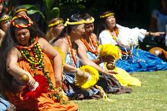 Seated hula (Emily Miller fine art) Tags: park festival hawaii dancers state hula feather canyon kauai hawaiian waimea rattle kokee uliuli emalani
