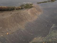 IMG_2189 (ahknaten) Tags: park field hospital river university michigan acid arboretum arbor pollution oil ann bloom algae mitchell spill gallup sheen huron fuel nichols petroleum dps hospitals aafd furstenburg phosphoric hrwc