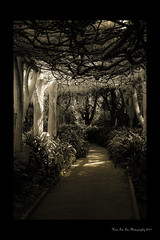 Huntington Library, Pasadena CA (Hsin Tai Liu) Tags: california white black art monochrome canon garden photography eos 50mm liu san flickr f14 library secret huntington explore tai usm pasadena hsin marino stumbleupon 50d