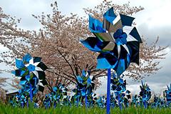 風車 Kazaguruma Pinwheels