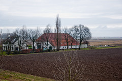Boerderij in de winter - Dutch farm in winter (RuudMorijn) Tags: trees roof winter red netherlands dutch rouge bomen rboles farm hiver nederland vermelho arbres fields holanda invierno toit inverno dach rood wit bume paysbas bewolkt brabant telhado ferme nus jos fazenda rvores dak niederlande noordbrabant boerderij kaal dussen brabants nederlandse kahlen rosu copaci roten  agricole akker holands  niederlndisch acoperis iarn holands goale   nerlandaise    arables herbceos arvel olandez rile ackerbaubetrieb arabile   krmzathollanda