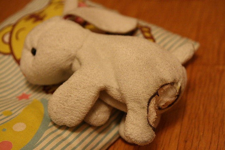 受傷的小兔兔001