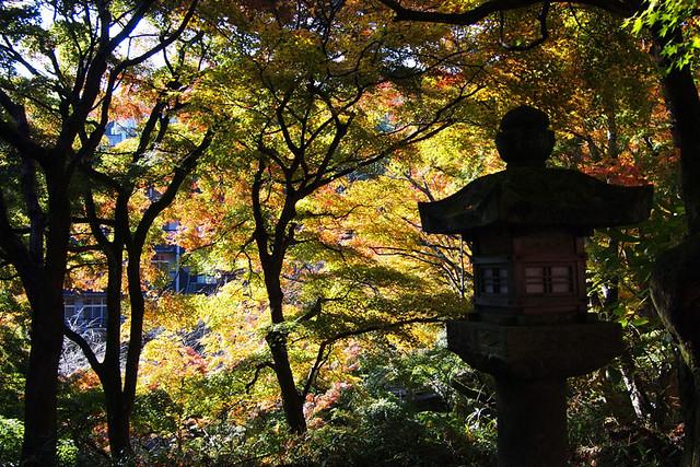 20101120_092505_談山神社