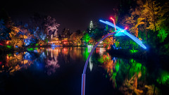 Hovering Dragonfly (Mark Solly (F-StopNinja)) Tags: park bridge lake reflection night bug lowlight dragonflies dragonfly bugs illuminated glowing recycling festivaloflights hdr poets taranaki newplymouth sigma1020mm pukekura explored nikond90 marksolly