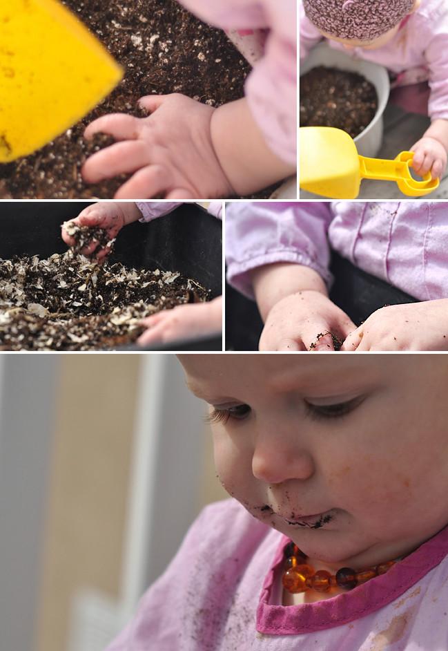 Eva Dirt