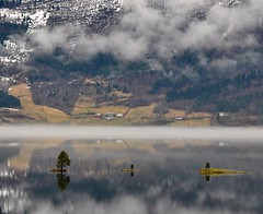 Tre sm yer i Hornindalsvatnet (ystenes) Tags: lake norway fog reflections norge 1001nights innsj magiccity nordfjord hornindal hornindalsvatnet mygearandme mygearandmepremium mygearandmebronze mygearandmesilver mygearandmegold mygearandmeplatinum mygearandmediamond flickrstruereflection1 flickrstruereflection2 flickrstruereflection3 flickrstruereflection4 rememberthatmomentlevel1
