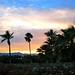 Coachella 2011 - 145