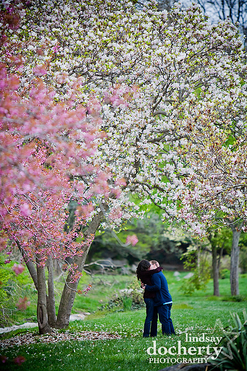 Philadelphia Wedding proposal photography
