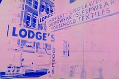 Lodge's Store in PolaBlue - Albany NY