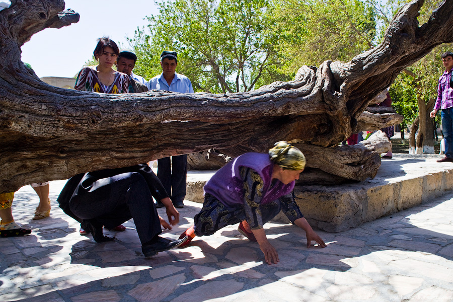 Bukhara people