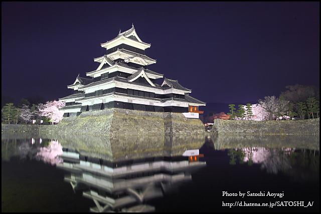 Matsumoto Castle NightSakura