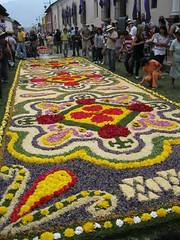An elaborate alfombra