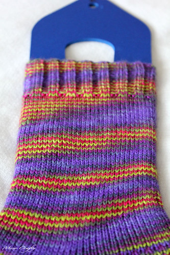 Plain Hummingbirds Socks - Leg