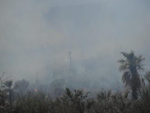 Castaños, Coahuila. Sierras en llamas. by Yo soy Maria.