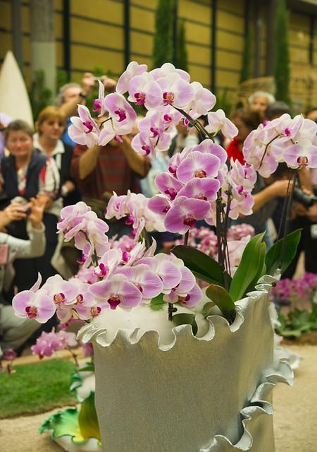 Цветочная выставка в Генуе 13