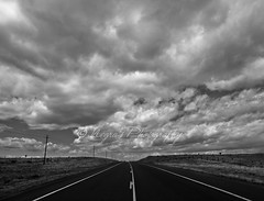 Wherever the road may lead you...enjoy! (negra223) Tags: life road vacation sky blackandwhite bw newmexico nature beauty lines clouds dark fun vanishingpoint moving travels driving view cloudy lol low fast windy openroad traveling copyrights wandering overhead sparse allrightsreserved amazingtrip overwhelming wideopenspaces route14 outinthemiddleofnowhere atitsbest thankyoudiana negra223 negrasphotography hatethetelephonepoles wellreallystandinginthemiddleofnowhere wherevertheroadmayleadyouenjoy