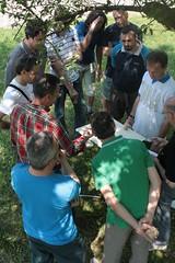IMG_3954 (Luigi Mengato) Tags: building training team torre outdoor delphi teamwork equilibrio esperienziale formazione