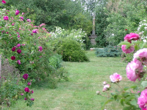 Promenade au jardin... by mboiseaubert