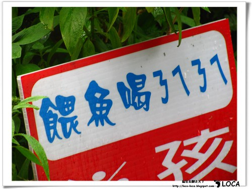 宜蘭樂活四日遊-童話村IMG_6545.jpg