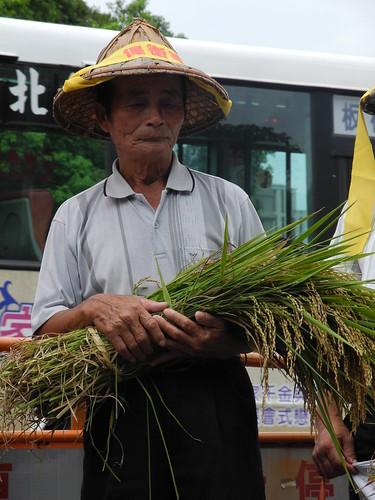 農民帶著辛苦種植出來的稻米,東海米倉難道要毀於炒地皮?