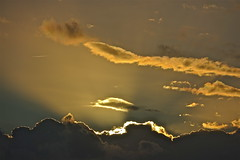 Rays (Deepgreen2009) Tags: crepuscularrays sunset rays light cloud cumulus silhouette evening horizon weather