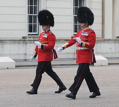 Img554956nx2 (veryamateurish) Tags: unitedkingdom british military army london wellingtonbarracks changingoftheguard publicduties ceremonial guardmounting newguard footguards householddivision grenadierguards