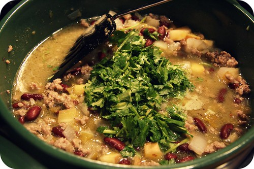 chile verde stew in pot