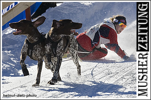 IFSS Sled Dog World Championship 2011, Hamar: Skijoring-Women