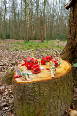 Fairly picnic