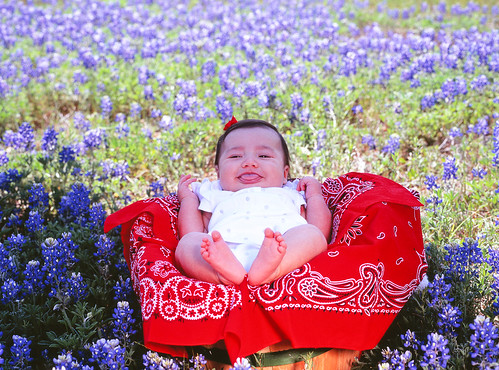 Adelaide in bluebonnets