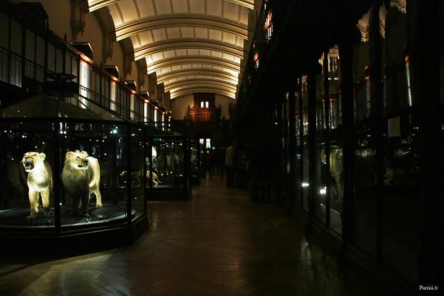 La salle des espèces menacées et des espèces disparues
