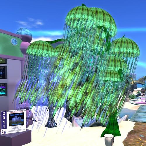 Jellyfish Tree