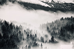 Above The Clouds II (Philipp Klinger Photography) Tags: above trip morning trees winter light shadow vacation cloud white mist mountain holiday snow black ski france mountains alps cold tree weather fog clouds forest alpes grenoble woods nikon frankreich balcony hill hills alpen philipp francia domaine rhone abovetheclouds chamrousse klinger rhonealpes isre d700 dcdead darselle domainedarselle ledomainedarselle