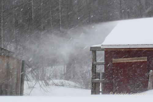 March 7, 2011 Storm (49 of 100).jpg
