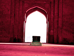 purple (parth joshi) Tags: dawn cycling child squirrell muses desolate mehrauli monumentsindelhi bhattimines adamkhanstomb