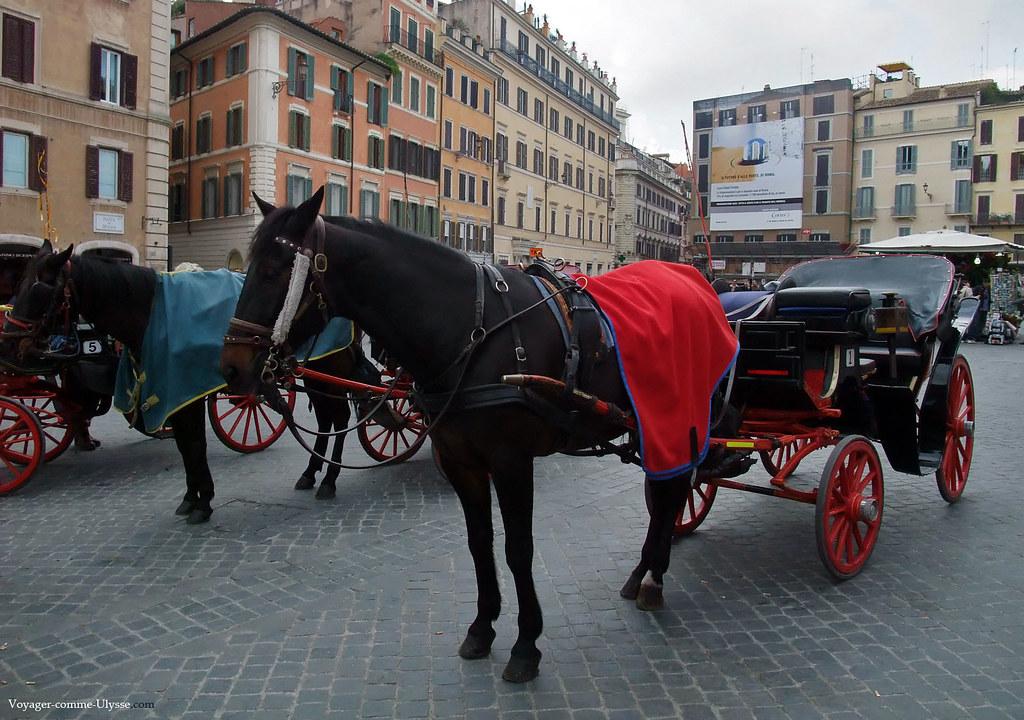 Il y a toujours des calèches et leurs chevaux, pour promener les touristes romantiques...