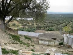 Pozo Ancho, lugar de numerosos suicidios y ¿asesinatos?