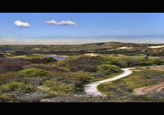 a nice day in the dunes (Wim Koopman) Tags: road sky holland netherlands dutch clouds photography foot cycling coast photo path walk dune den stock hike hague coastline winding shrub haag wassenaar stockphoto stockphotography meijendel wpk oostduinpark