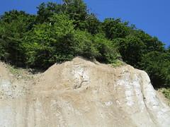 IMG_0478.JPG (RiChArD_66) Tags: kreidefelsen rgen strandkreidefelsenrgenstrand