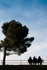 peschiera (ffabri) Tags: landscape garda italia azzurro paesaggio lagodigarda sogno peschiera d90 sognante pescheiradelgarda