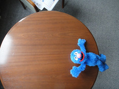 Grover posing on a wooden table