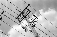 2009-07 Delaware power pole (electrixelectrix) Tags: bw mamiya tlr monochrome electric 35mm scotland power pentax k1000 utility pole wires electricity mf constructivist conductors constructivism insulator c330 sekor
